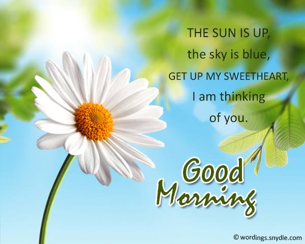 May-todays-sunshine bring-blessings